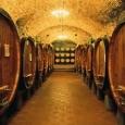 vignammaggio-cellar-by-john-scanlan