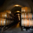 wine-barrels-by-jennie-sewell