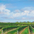 east-end-vineyard-by-carol-saxe