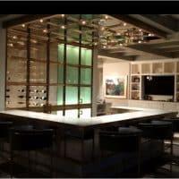 Custom Bronze Doors for Contemporary Wine Cellar